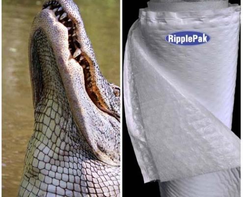 alligator roll